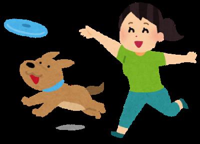flying_disk_dog_pet