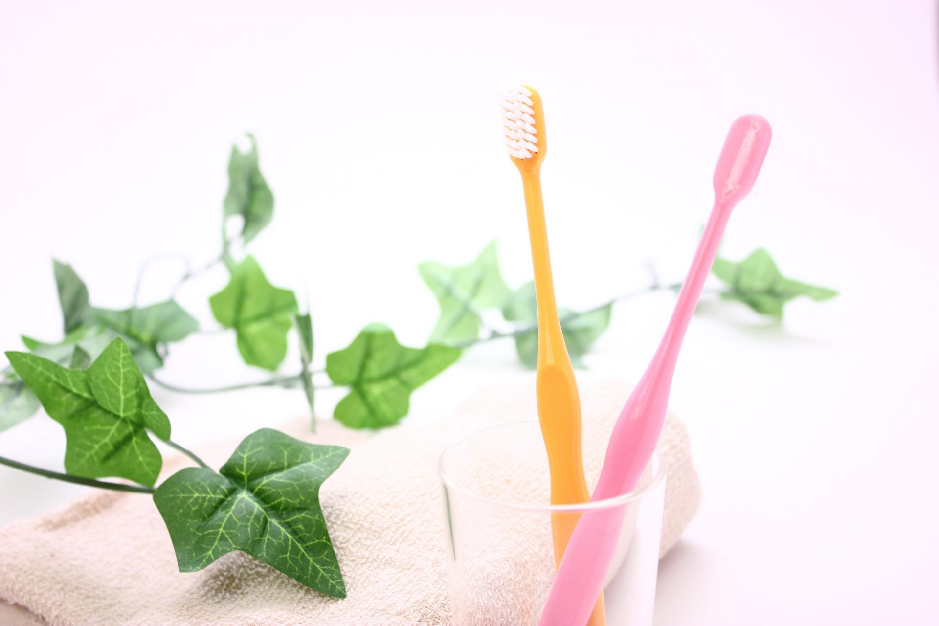 歯科衛生士は求人数も多く、夜勤が無く女性として働き易い職業